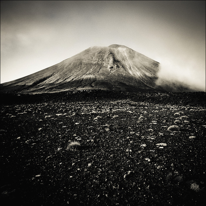 Photograph NZ in BW I by Sylvain Perenes on 500px