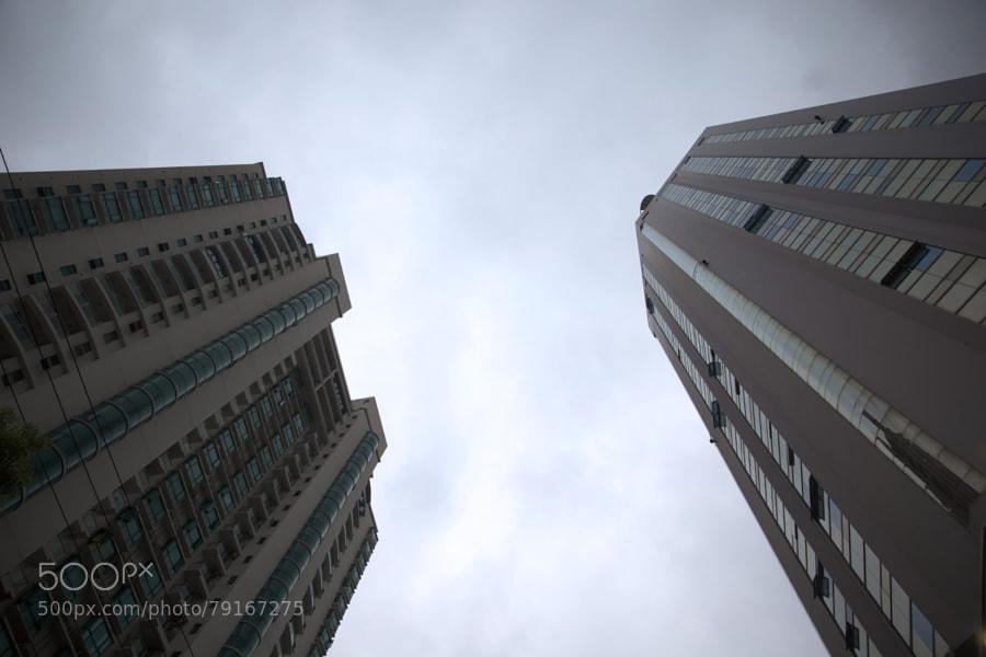 阴雨的上海