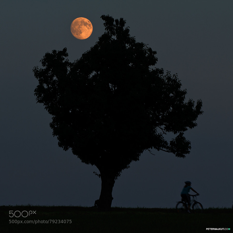 Photograph Moon rider by Peter Majkut on 500px