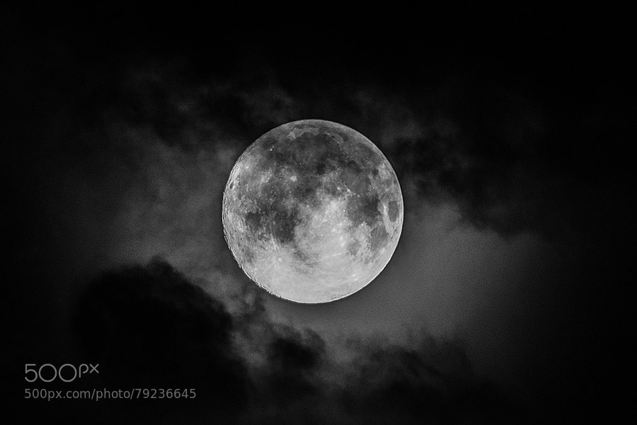 Photograph Vollmond II by Susanne Ludwig on 500px