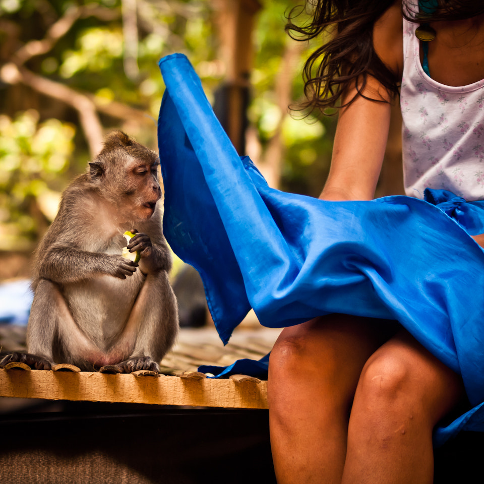 Photograph The monkey who saw too much, Pura Luhur Uluwatu - Bali by Adde Adesokan on 500px