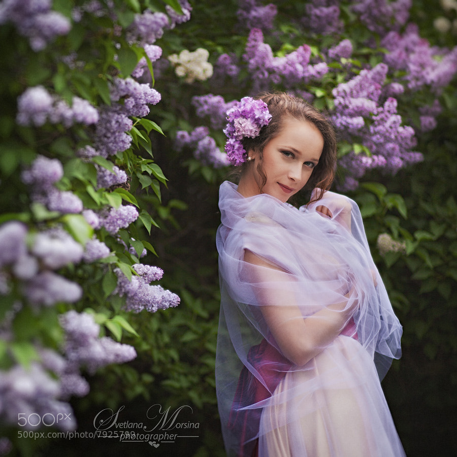Photograph Lilac dream by Svetlana Morsina on 500px