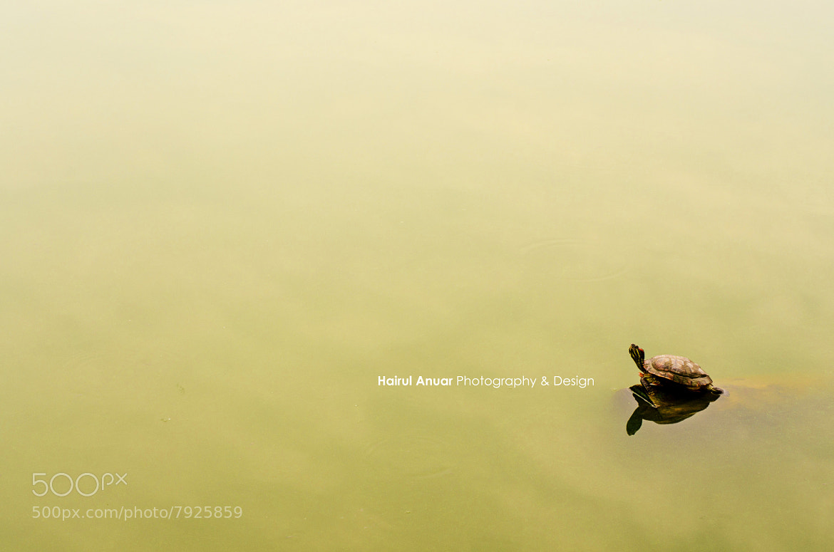 Photograph Alone by Kuhairulanuar Photography & Design on 500px