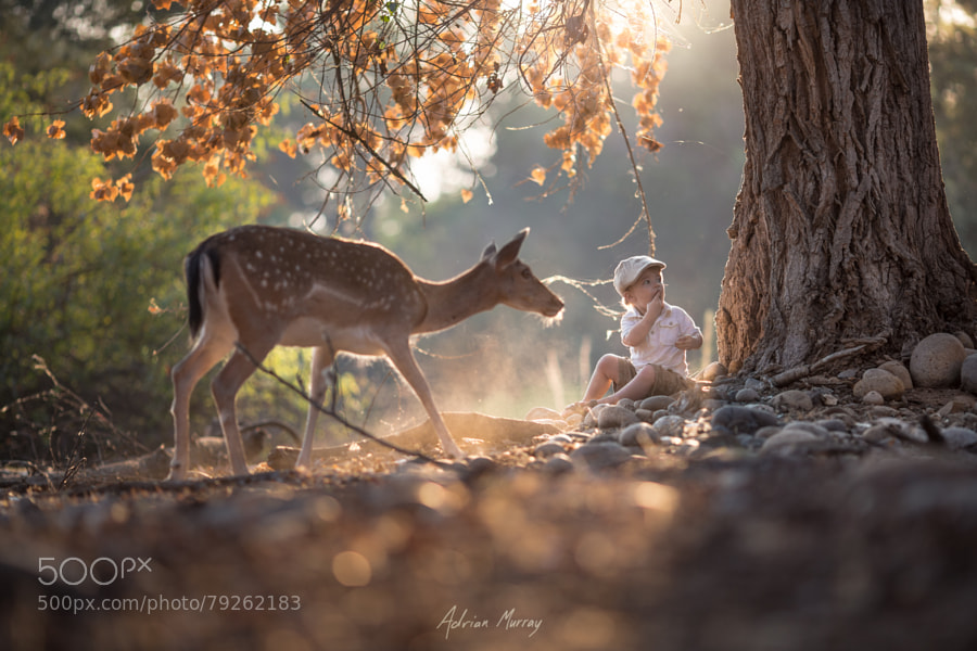 Photograph Eating with the Wild by Adrian Murray on 500px