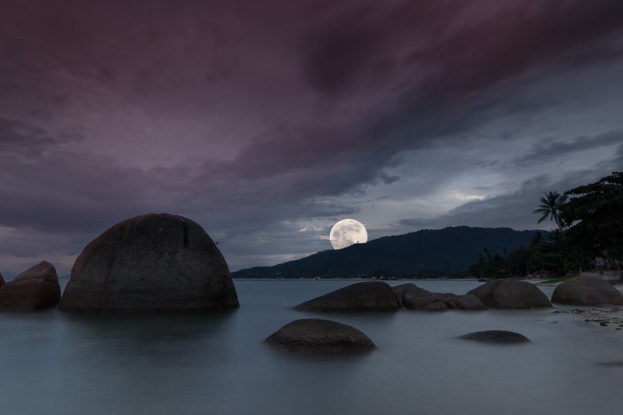 Photograph Moonrise - Supermoon 2014 by Tim Ebert on 500px