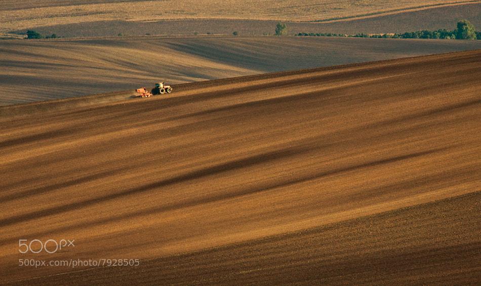 Photograph field by Anna Klinkosz on 500px