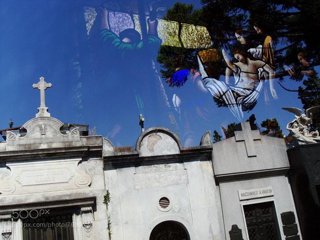 Photograph resurreccion (toma directa) by Hugo Desch on 500px