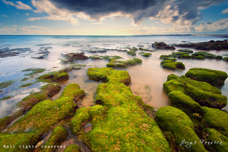 Photograph Chunks Green Sea by Jorge Fonseca on 500px