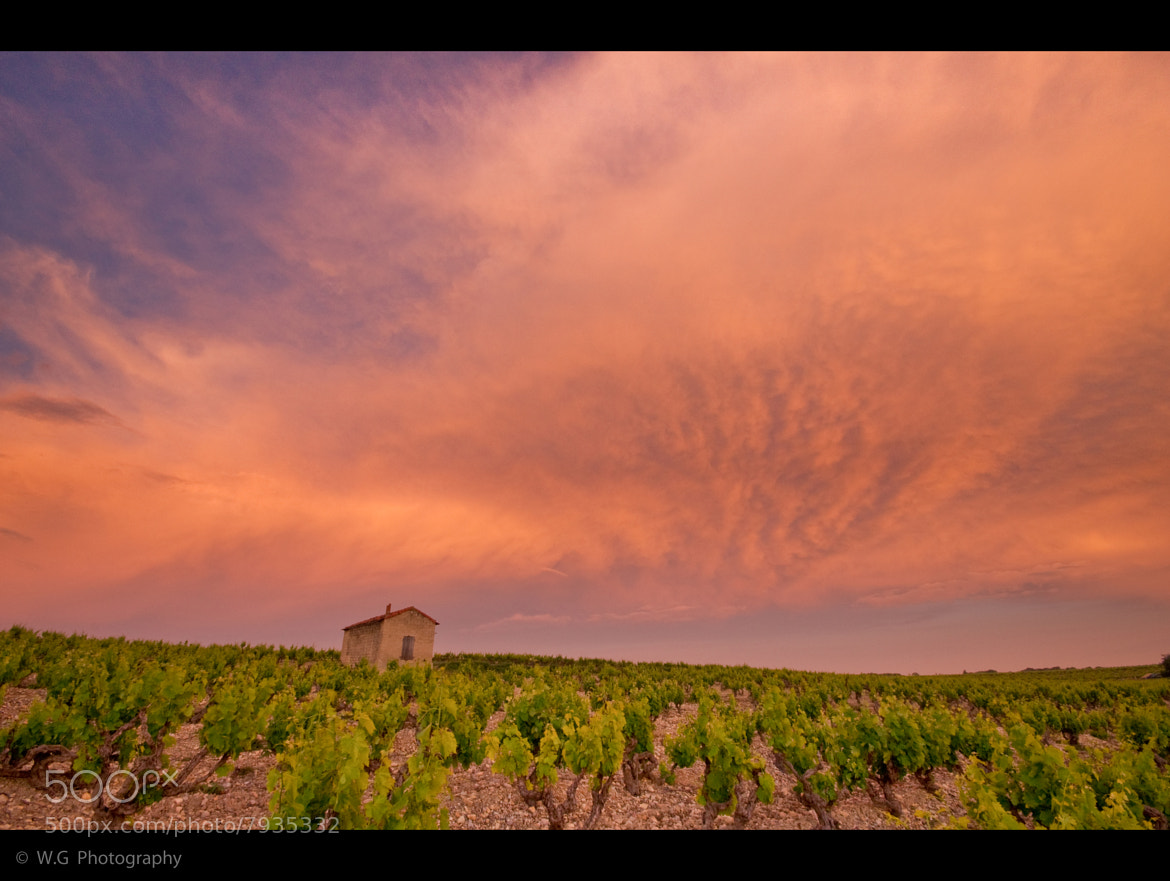 Photograph Pink sunset#1 by Guillaume Weber on 500px