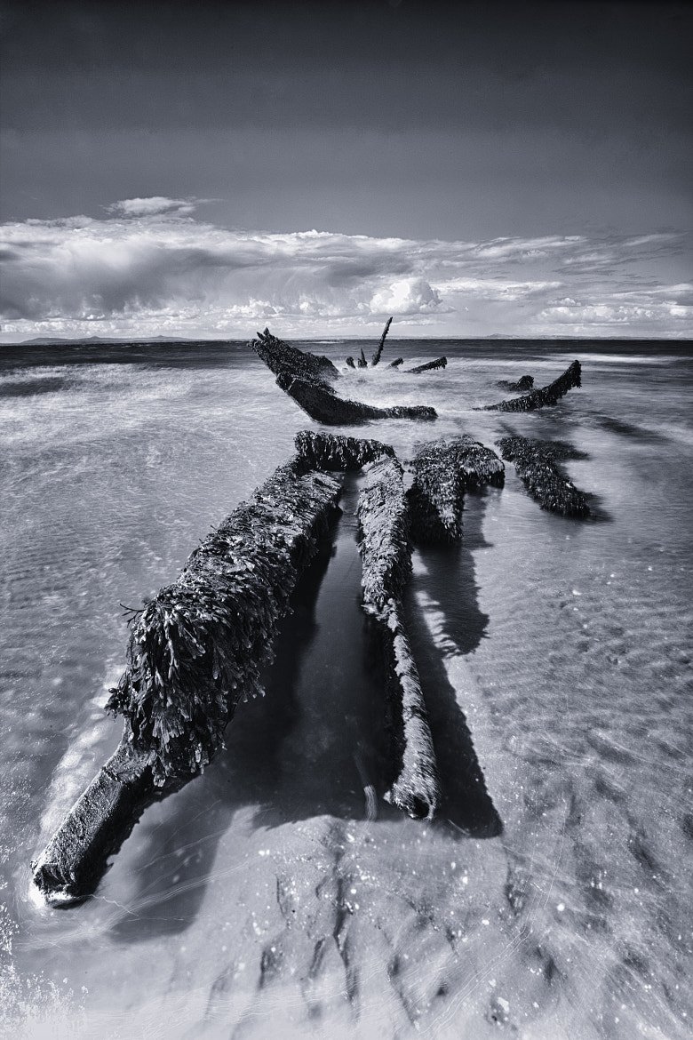 Photograph Wreck by Rich Dyson on 500px