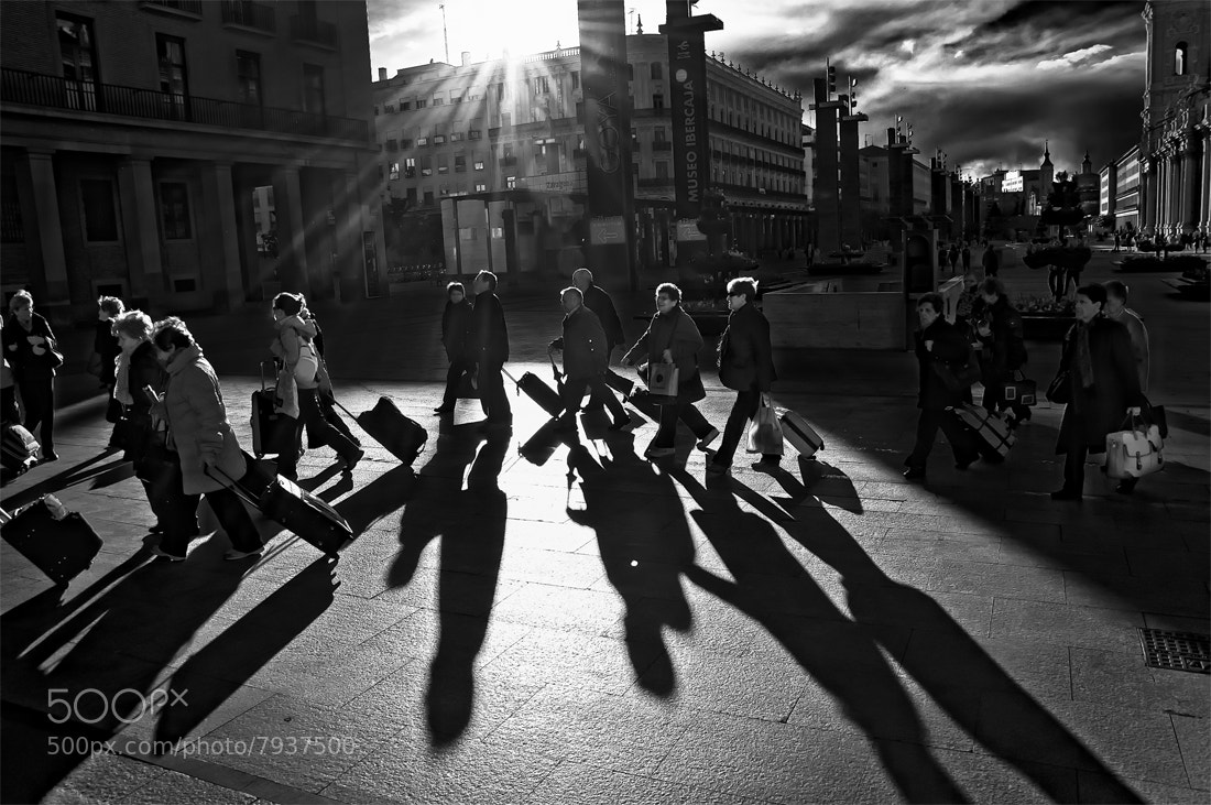 Photograph ¡Al ataqueeee! by MIGUEL BECERRA  on 500px