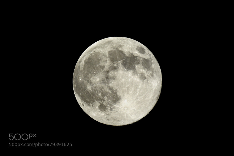 Photograph Super Moon 2014 by Leonid Spektor on 500px