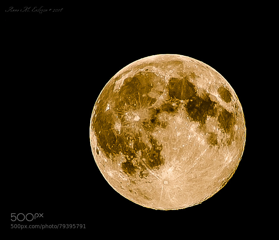 Photograph Super Moon! by Anne M. Erdogan on 500px