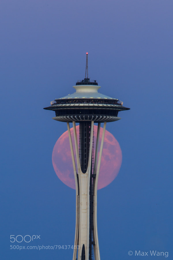 Photograph Seattle supermoon 2014 by Max Wang on 500px