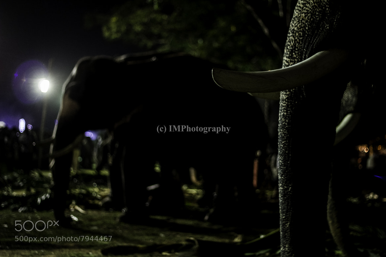 Photograph Its dark everywhere by Indrajith Maruthonkara on 500px