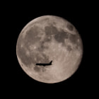 Постер, плакат: Fly me to the Moon