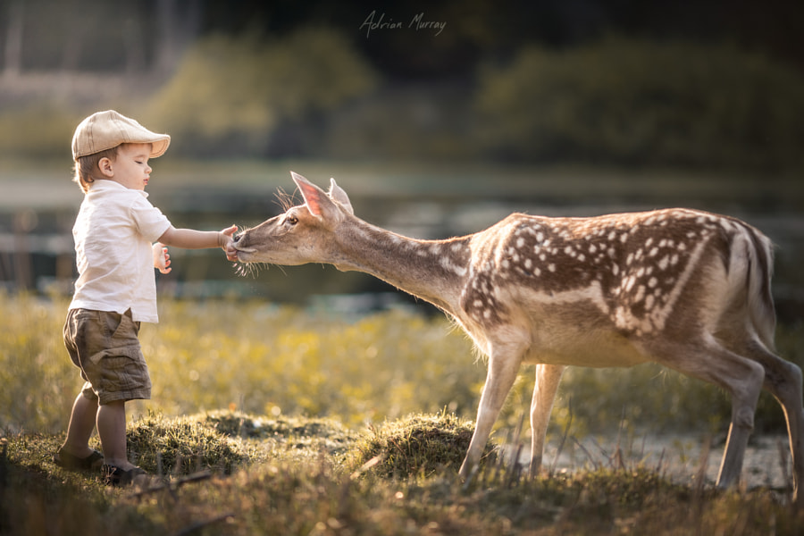 Photograph The hand that feeds by Adrian C. Murray on 500px