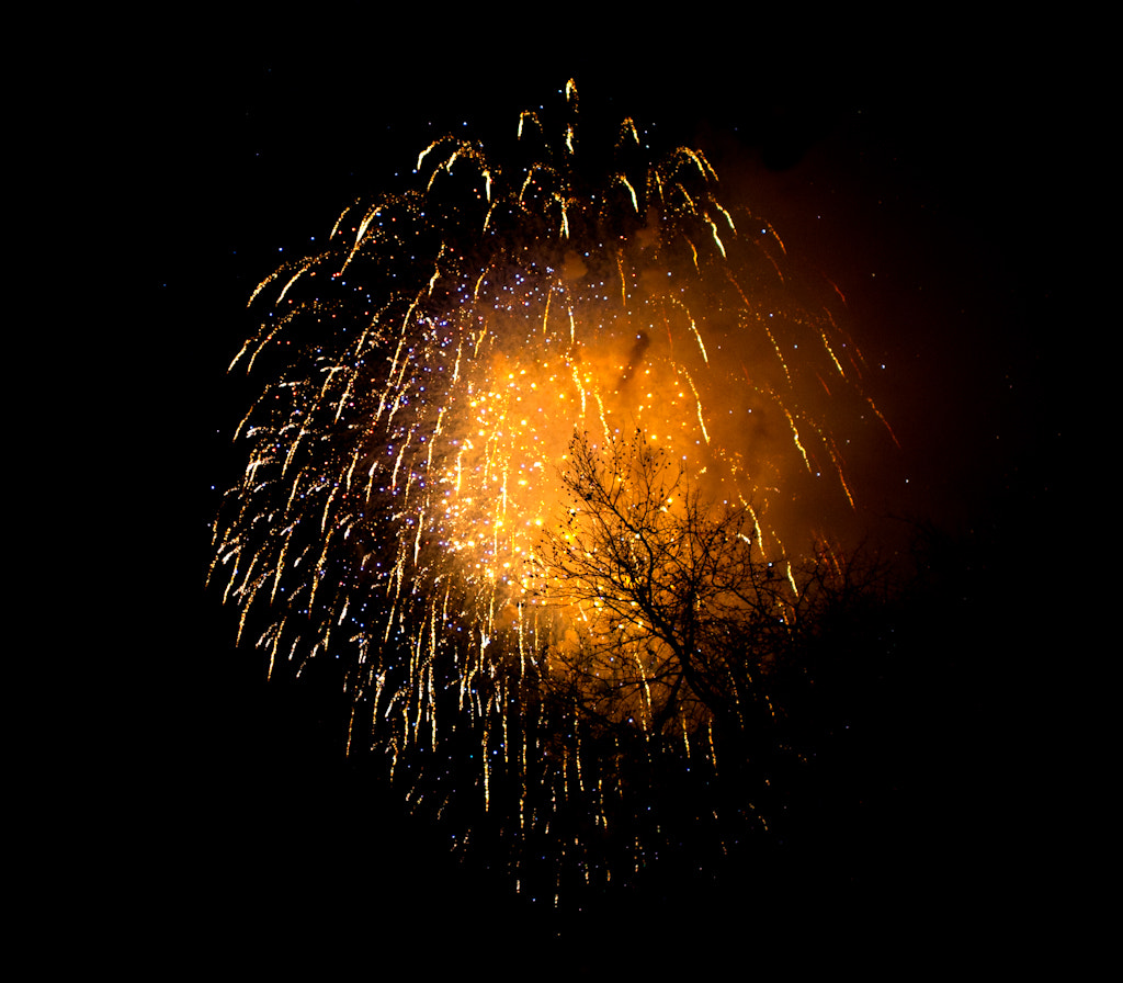 Photograph tree the fire works  by Ahmed Alhammad on 500px