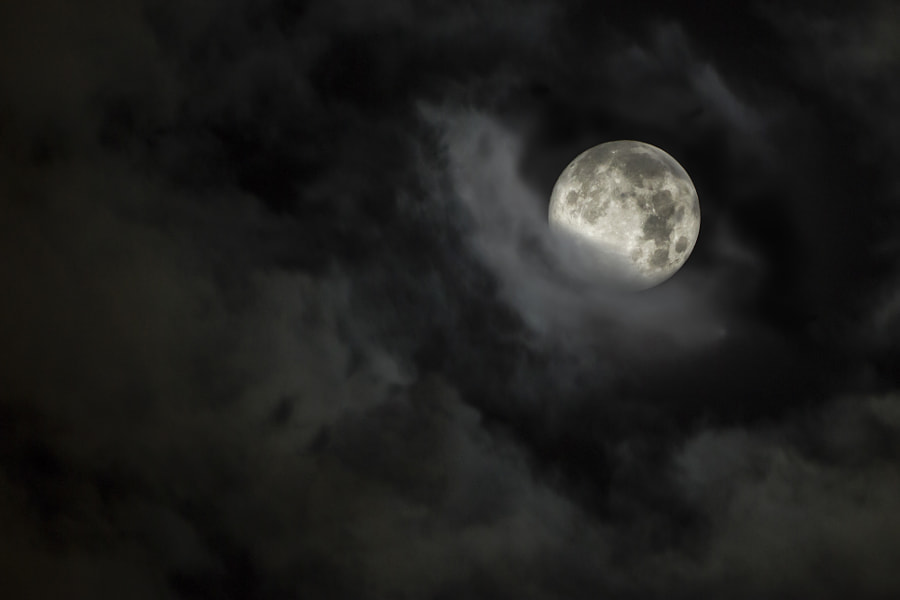 Photograph An appropriate night for anything by Milos Savkovic on 500px