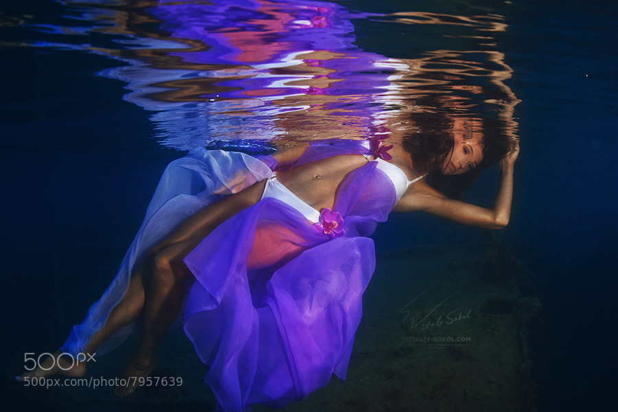 Photograph Underwater dance. Flowers by Vitaliy Sokol on 500px