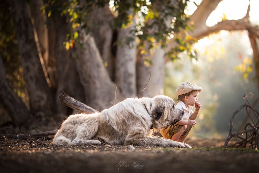 Photograph Best Friends by Adrian C. Murray on 500px