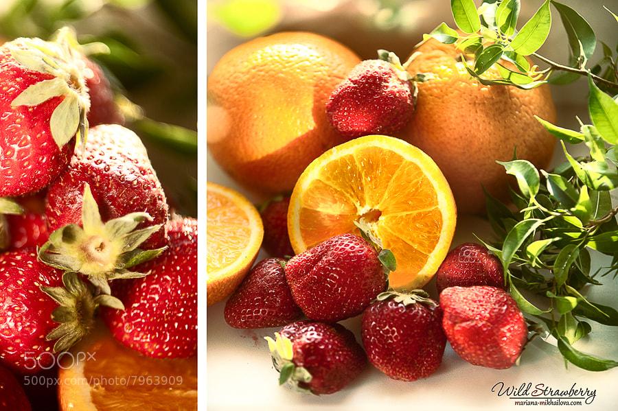Photograph strawberry by Mariana Mikhailova on 500px