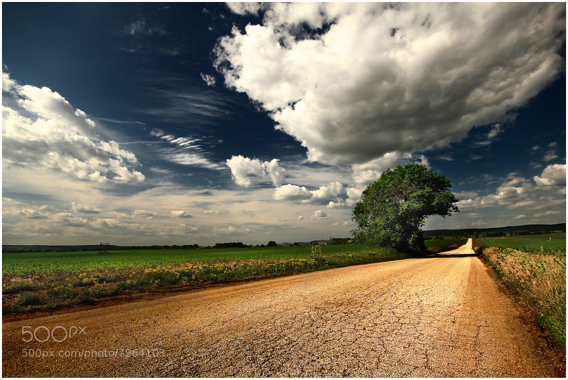 Photograph on the way by Gabor  Medzihradszky on 500px