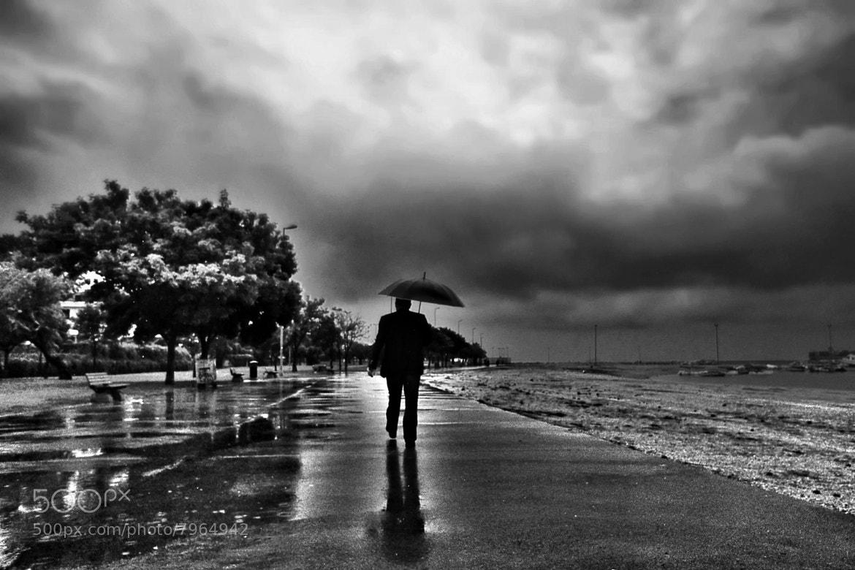 Photograph Rain I by Günseli Baki on 500px