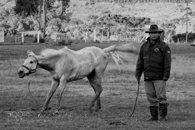 Photograph Shake by Eduardo Daniel on 500px