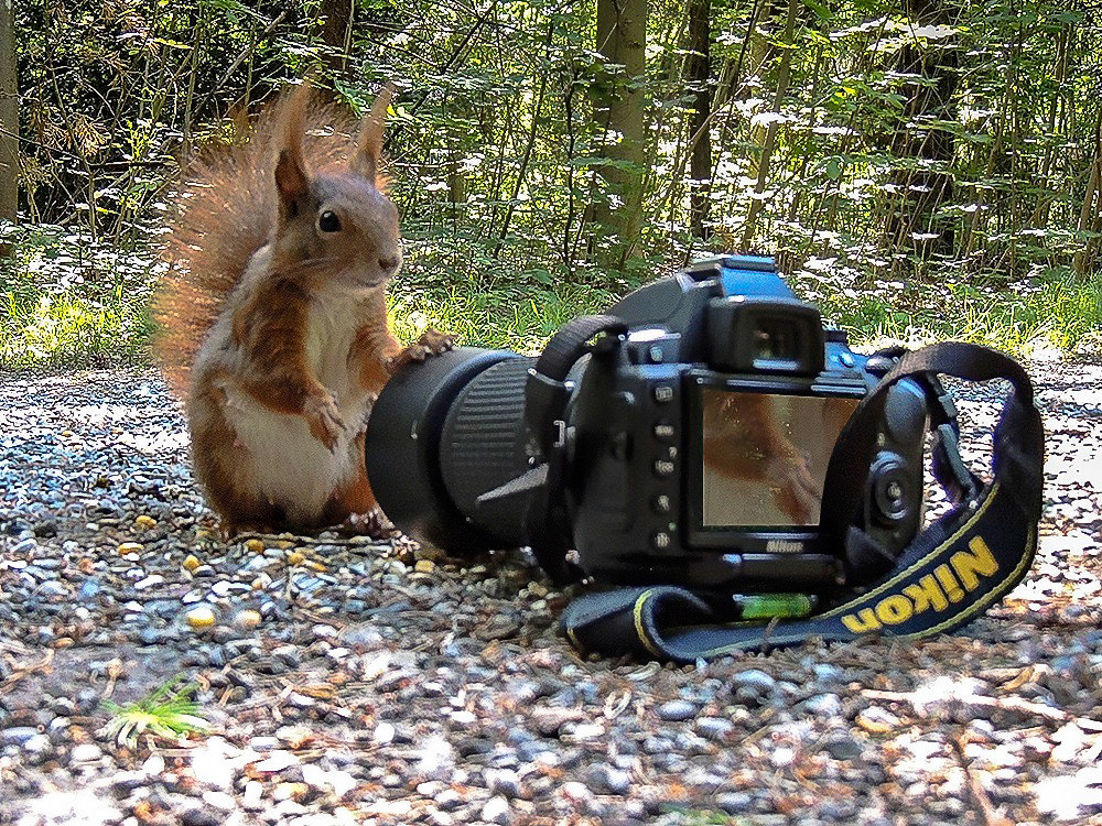 Photograph Nikon professional by Robert Durisch on 500px