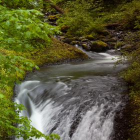 Oneonta Creek by Thomas Duffy (ThomasDuffy)) on 500px.com