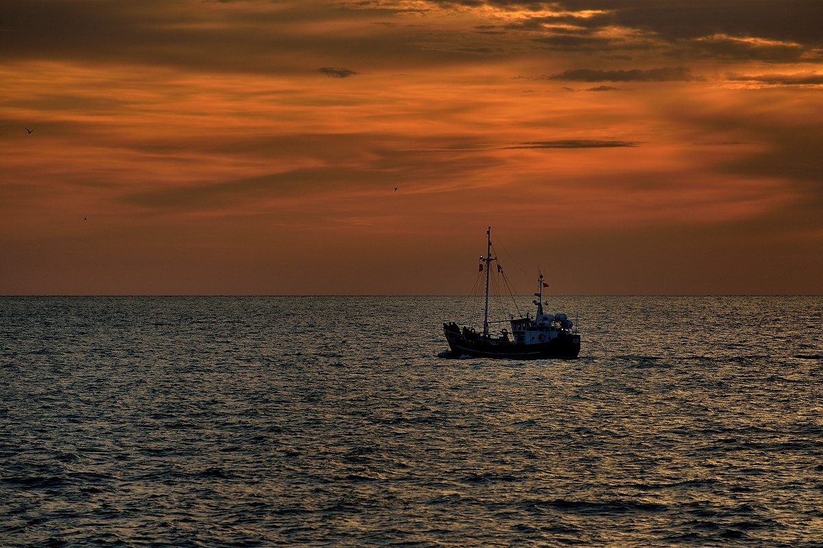 Photograph The morning of fishing boat 2 by Mirek  . on 500px
