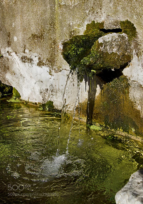 Photograph Manantial by Silvia Romero Pareja on 500px