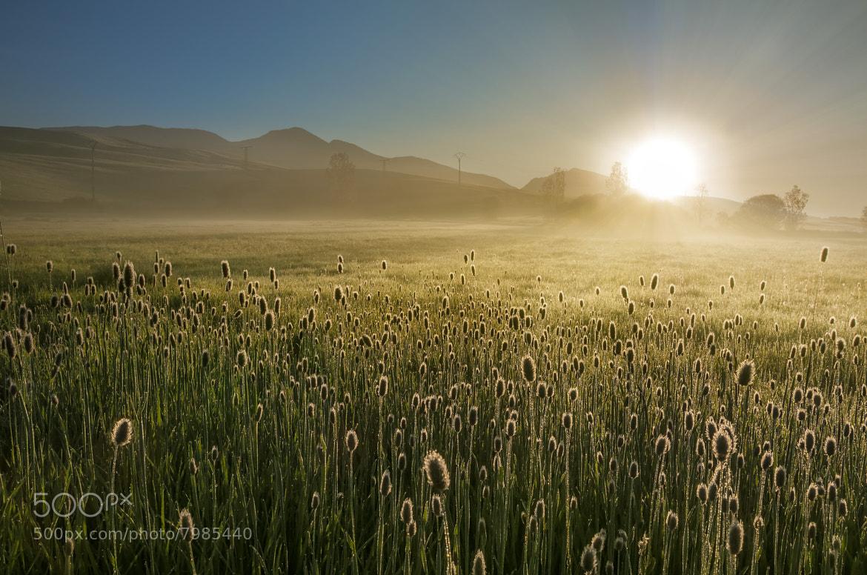 Photograph Sol naciente by Ruben Fernandez Barragan on 500px