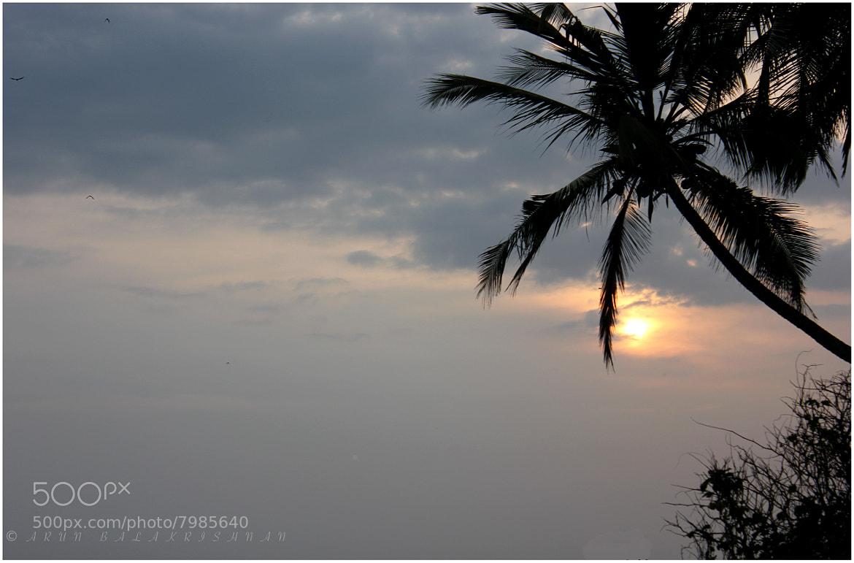 Photograph Untitled by Arun Balakrishnan on 500px