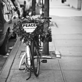 Peace by Sii Wong (SiiW)) on 500px.com