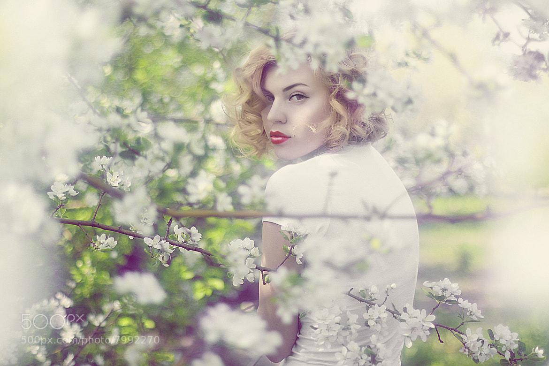 Photograph Spring by Anastasia Galaktionova on 500px