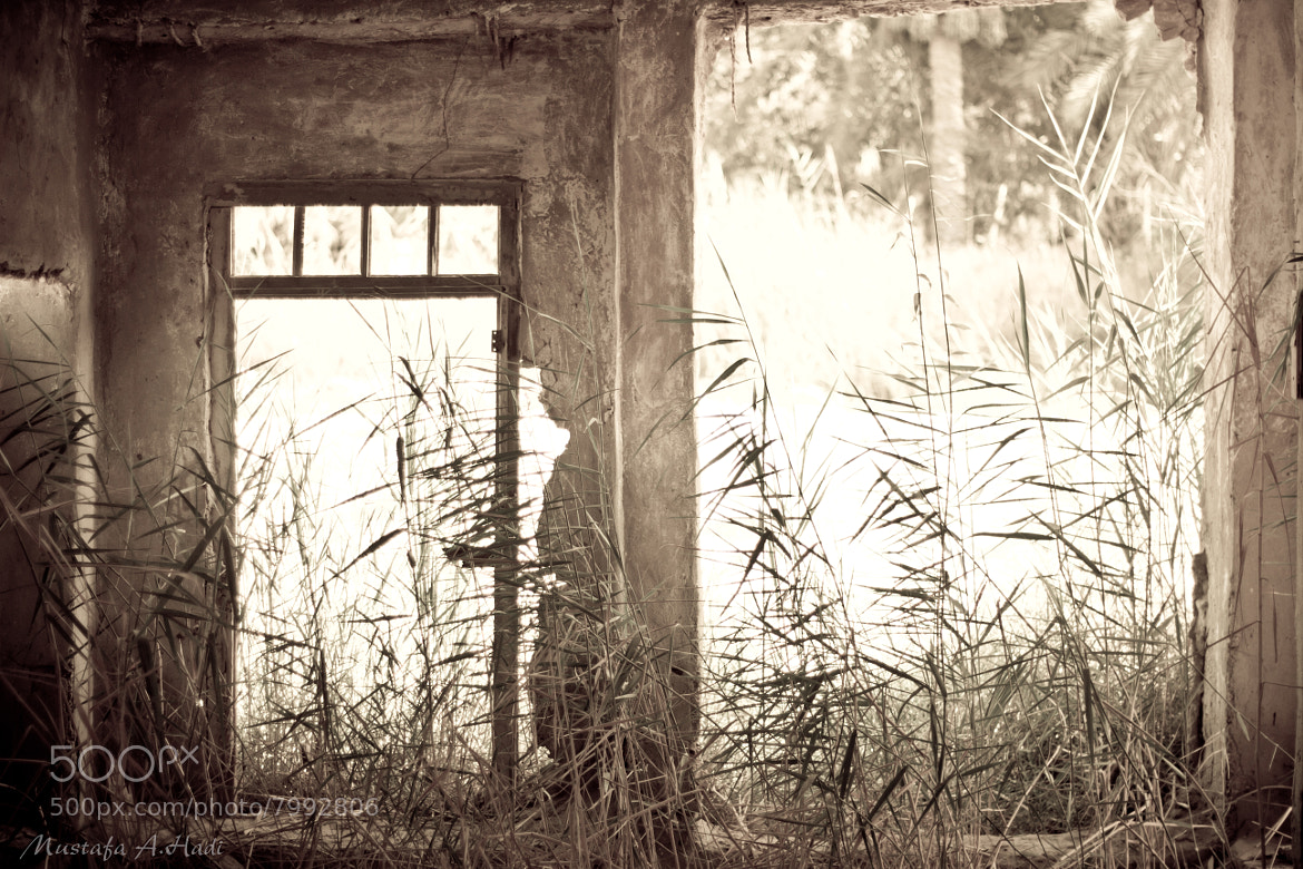 Photograph Remnants of Memories by Mustafa AbdulHadi on 500px