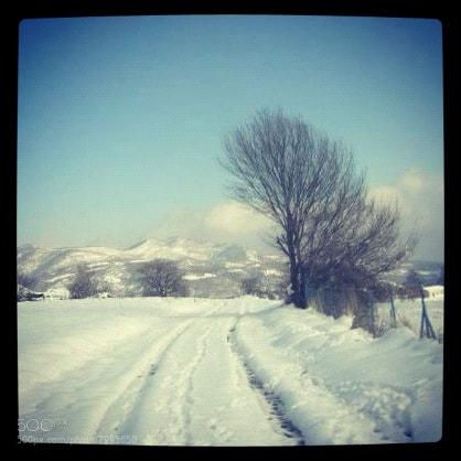 Photograph Winter by Kwstas Siranidis on 500px