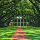Постер, плакат: Oak Alley Plantation