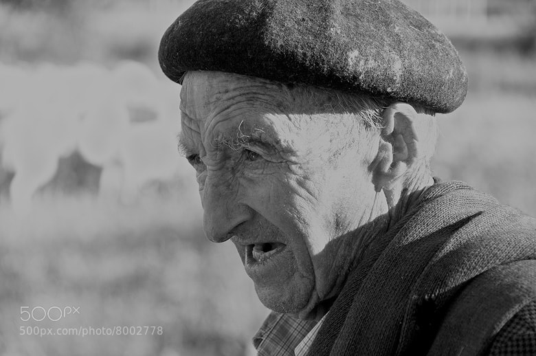 Photograph The old Shepherd by Arnold Moolenaar on 500px