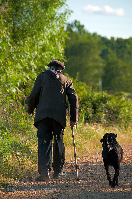 Photograph The old Shepherd and his dog by Arnold Moolenaar on 500px