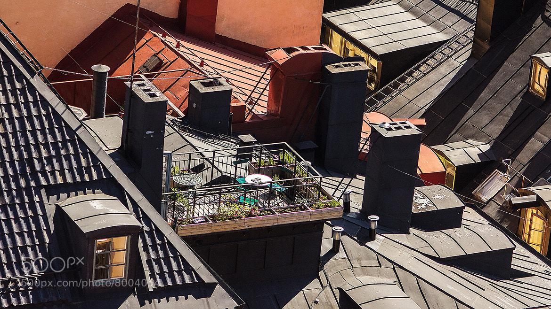 Photograph Roof garden by Christer Häggqvist on 500px