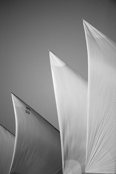 Sailing Dhows Vertical