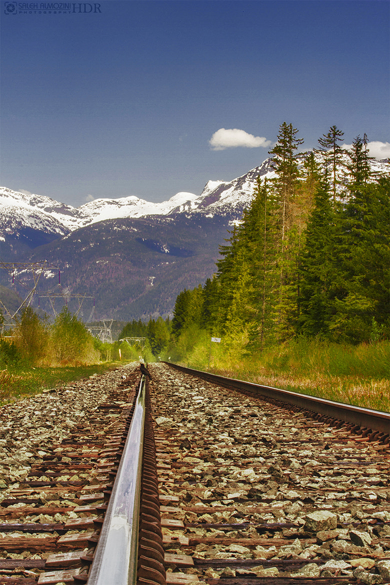 Photograph Rail and Nature by saleh almozini on 500px