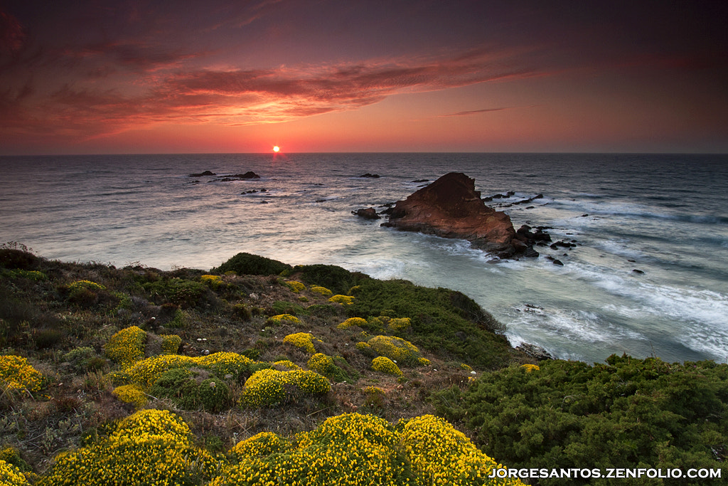 Photograph Red Island by Jorge  Santos on 500px