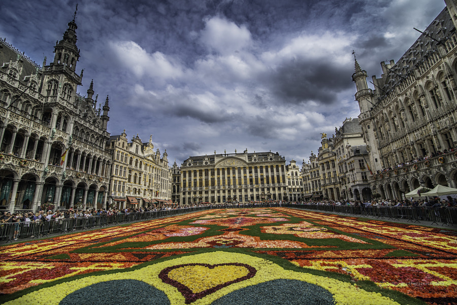 Photograph Brussels flower carpet by Shain & Ajay  on 500px