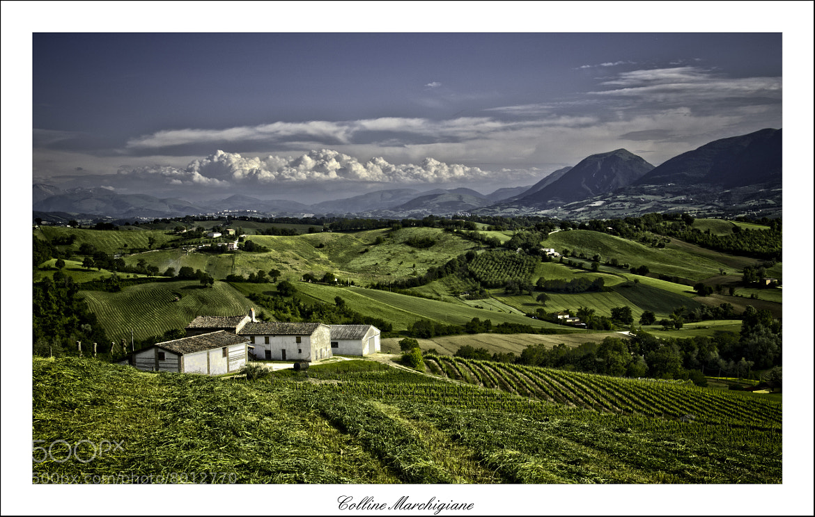Photograph Hills of Marche by Andrea Marinelli  on 500px
