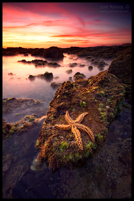 Fine Art Landscape Photography Fallen Star by nature and landscape photographer José Ramos