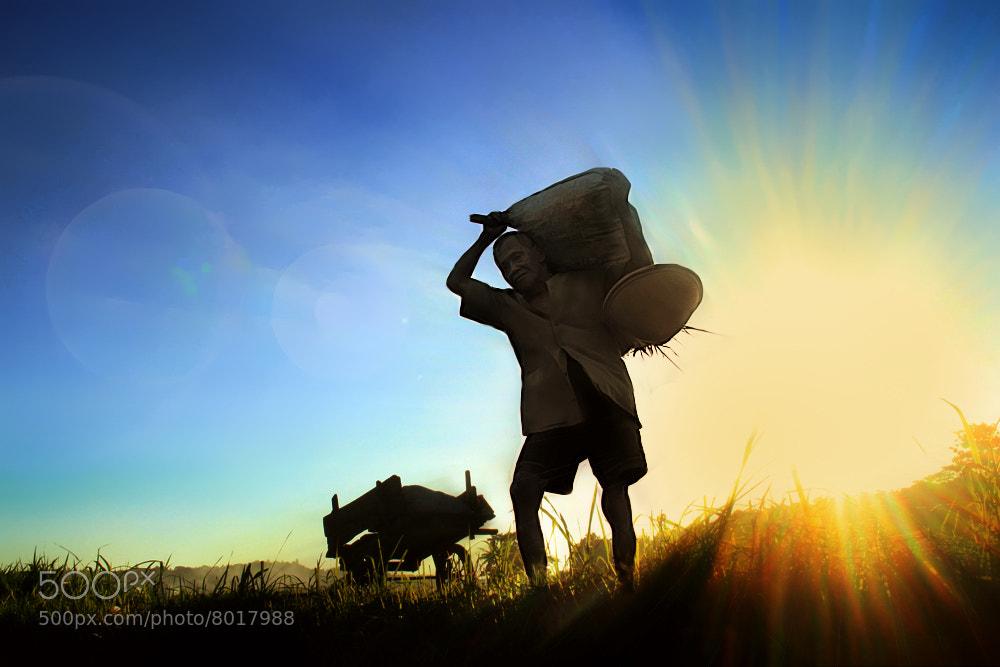 Photograph Pulang Ngarit by 3 Joko on 500px